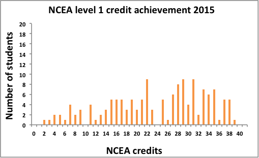Graph showing Mangare NCEA credit student results 2015