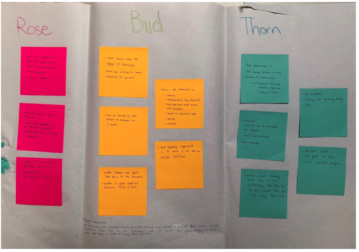 Design process categories of Rose Bud Thorn.
