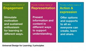 Universal design for learning 3 principals